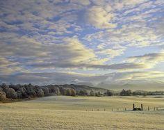 Ian Cameron  Milk and Honey    Cairngorms, Scotland.