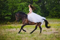Wedding dress and horses !