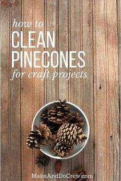 Learn how to de-bug, disinfect and clean pine cones for craft projects by simply using vinegar and your oven. Also, learn how to make pine cones open (or bloom) for even more crafty potential. Click to see full tutorial. | MakeAndDoCrew.com via @makeanddocrew