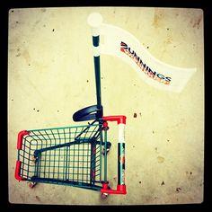 Bunnings Trolley