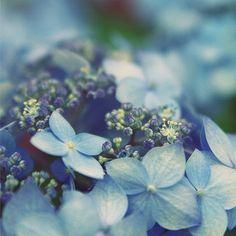 couleur bleu - Page 6