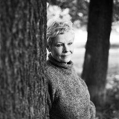Judi Dench Incredibly talented and versatile British actress of stage screen and TV  latest played M in James Bond movie