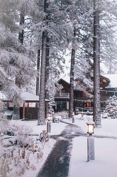 Was tun in Lake Tahoe, Lake Tahoe Guide, South Lake Tahoe Guide, Tahoe Travel … – Winter And New Year South Lake Tahoe, Lake Tahoe Winter, Winter Girl, Winter Szenen, Winter House, Black Bear Lodge, Rustic Home Design, All Nature, Winter Beauty