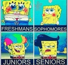 I didn't look like that when I was a freshmen! And I certainly don't look like Sophmore spongebob now! And I really hope I don't look like Junior spongebob next school year! Senior spongebob looks cool though. Funny Pins, Funny Stuff, Random Stuff, Random Things, Random Humor, Stupid Stuff, Weird Things, Funny Spongebob Memes, Jokes