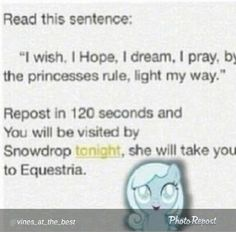 TAKE ME TO EQUESTRIA