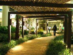 Sítio Prosperidade: Almas de Bambu