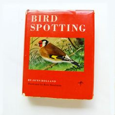 Bird Spotting by John Holland 1963 British by SunStateVintage