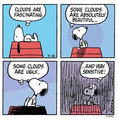 Don't insult a cloud or else. Snoopy Cartoon, Snoopy Comics, Peanuts Cartoon, Peanuts Snoopy, Peanuts Comics, Happy Comics, Snoopy Love, Snoopy And Woodstock, Snoopy Wallpaper