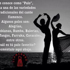 ¡Comenta aquí abajo, cuales son tus palos favoritos del flamenco! ✨✨ #Flamenkko #condoblekyolè #flamenco #Comenta