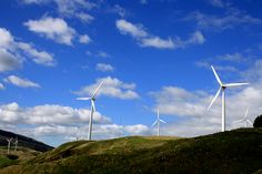 Wind Farm, Palmerston North, New Zealand. See It, Diaries, Bro, Wind Turbine, New Zealand, Places Ive Been, Bucket, World, Photos