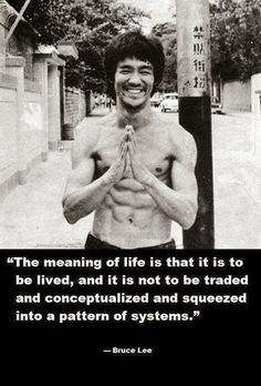 The meaning of life is that it is to be lived and it is not to be traded and conceptualized and squeezed into a pattern of systems | Anonymo...