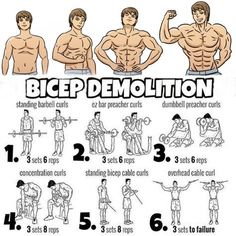 Biceps may not be a major muscle to prepare but rather it is a significant muscle to prepare. You need to prepare both of our short heads and long heads of biceps. Solid Biceps offer solidarity to your arms and offer solidarity to put more loads. Big Biceps Workout, Gym Workout Tips, Aerobics Workout, Weight Training Workouts, Mens Bicep Workout, Bicep Workouts For Men, Interval Training, Planet Fitness Workout, Fitness Workouts