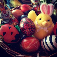 """ Photo taken by Spring One, Early Spring, Easter Chocolate, Equinox, Happy Easter, Easter Eggs, Witch, Bloom, Seasons"