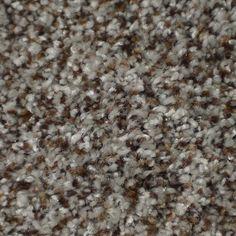 Stainmaster On Broadway Active Family Boca Plush Carpet Sample Carpet Diy, Plush Carpet, Best Carpet, Hall Carpet, Carpet Ideas, Sisal Carpet, Basement Carpet, Cheap Carpet, Modern Carpet