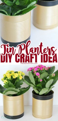 Why not recycle used tin cans into something pretty and useful like some recycled flower pots? Flower pot making has never been easier! Here's how to make tin plant pots in just a few easy steps. #easypeasycreativeideas Diy Crafts For Teen Girls, Diy Crafts For Adults, Easy Diy Crafts, Fun Crafts, Recycled Tin Cans, Recycled Crafts, Cool Diy Projects, Project Ideas, Tin Can Flowers