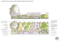 Planting plan - British native plants