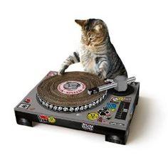 Kratzbaum DJ Pul für Katzen
