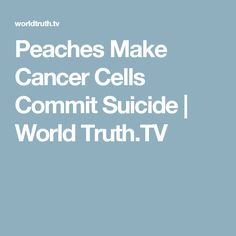 Peaches Make Cancer Cells Commit Suicide | World Truth.TV