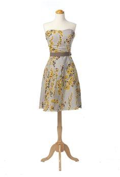 Silk Cotton Voile Strapless Dress (Watters)