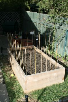 Rest: How To Keep Dogs And Cats Out Of Your Garden | Home | Pinterest |  Gardens, Organic Gardening And Container Gardening
