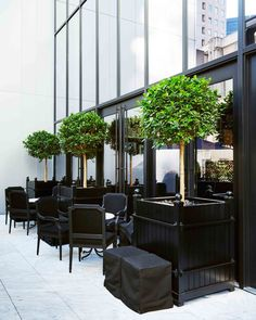 Contract Gallery — Planterworx Metal Counter Stools, Gramercy Park, Nyc Hotels, Upper West Side, Backyard, Patio, Potted Plants, Plant Pots, Diy Home Improvement