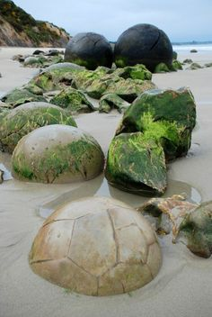 Moeraki Boulders, sphere rock formations from ancient times discovered in NZ.