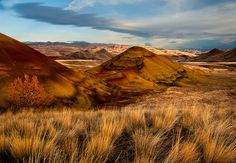 The Painted Hills by Rick Lundh on 500px