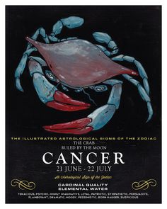 Illustrated Zodiac Cancer the Crab 8 x 10 by wellsillustration