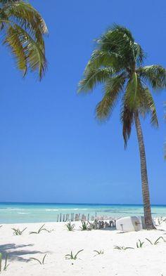 カンクン ビーチ Cancun beach