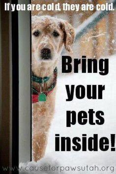 bring pets inside ... please