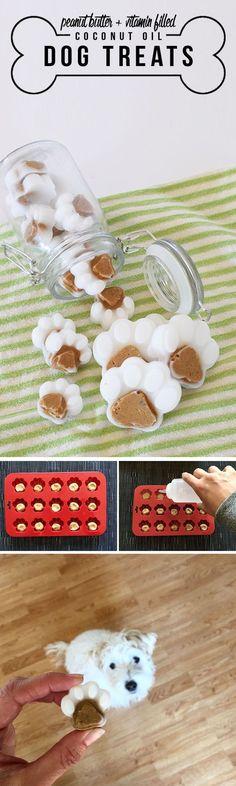 Peanut Butter + Vitamin Filled Coconut Oil Dog Treats