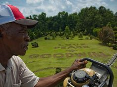 Pearl Fryar and his topiary garden, much of which was started from plants he rescued from the compost piles at local nurseries