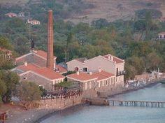 Olive Press Hotel, Molyvos, Lesvos