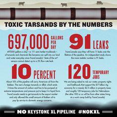 Toxic Tarsands