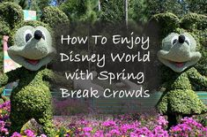 Walt Disney World is a popular place this time of year, but don't let spring break crowds discourage you from attending! Find out how.