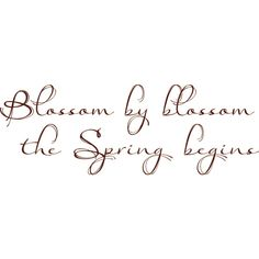 MRD_SIS3_E3_wa-Spring.png ❤ liked on Polyvore featuring words, text, spring, filler, quotes, article, phrase and saying