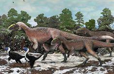 Yutyrannus - a newly discovered feathered ancestor of Tyrannosaurus rex