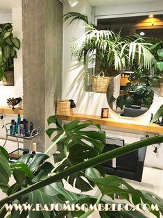 Cuando vas a la #peluqueria  y acabas en medio del #paradise  ☘️ & ❤️♀️♂️ #barcelona #hair #hairstyles #plants #plantas