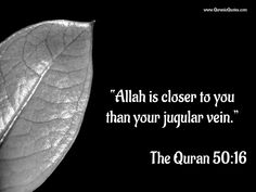 "#13 The Quran 50:16 (Surah Qaf) ""Allah is closer to you than your jugular vein.""…"