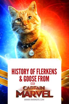 The Comic Book History Of Flerkens And Captain Marvel's Scene-Stealing Feline Pet, Goose Marvel Cake, Thor Marvel, Marvel Fan Art, Captain Marvel, Avengers, Marvel Comic Books, Marvel Characters, Marvel Movies, Alien Photos