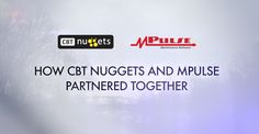 cbt nuggets - project management for the real world