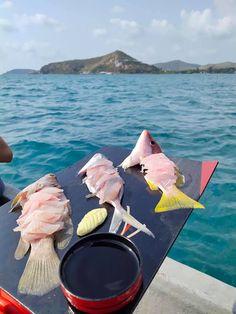 ตกหมึก ตกปลา กับ ไต๋บุ๊ค แสมสาร จังหวัดชลบุรี 2