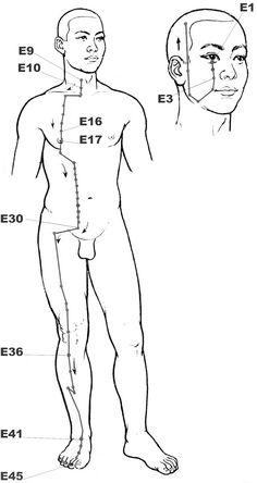 #Stomach #acupressure #reflexology meridian • Press any sore point on that #meridian so as to balance it back.