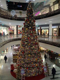Bratislava, Slovakia Christmas In The City, Christmas Trees, Christmas Lights, Xmas, Bratislava Slovakia, Celebration Around The World, Globe, Coastal, Around The Worlds