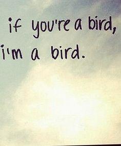 If your a bird I'm a bird