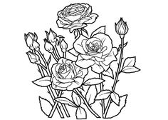 pin by bin453 on gül kitabı 3   pinterest   doodles and image search - Printable Coloring Pages Roses