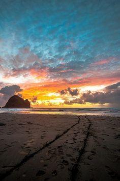 Piha Beach, West Auckland, North Island, New Zealand