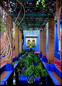 Morocco Travel Inspiration - Marrakech Majorelle