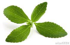 Sementes De Stevia Rebaudiana Adoçante Natural P/ Mudas - R$ 7,90 no MercadoLivre