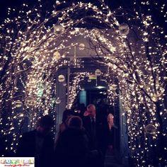 Fairy Lights Wedding Arch Entry Way